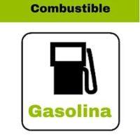 asiaticos gasolina